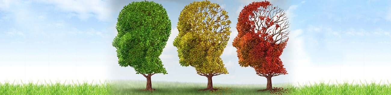 Alzheimer & Dementia Support