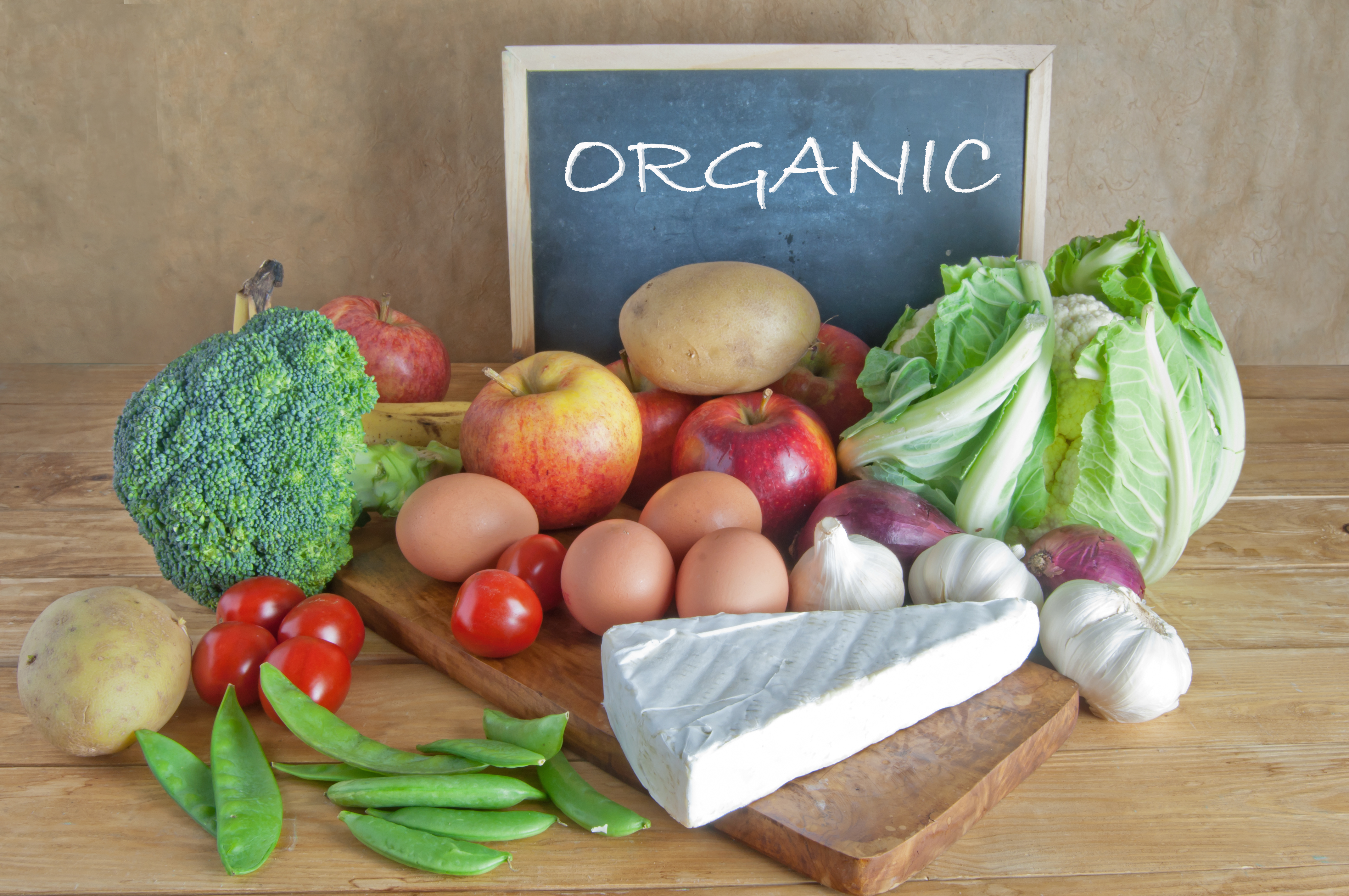 the organic food as a mystery and the arguments on the going green Mcdonald's is a company on a mission tired of being held up as an example of corporate evil and greed, the fast food chain has been hitting out at critics with a series of environmental and.